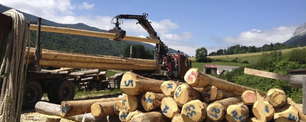 gîtes du tilleul luxe 10 12 personnes vercors Rencurel eco-construction rondins fustier